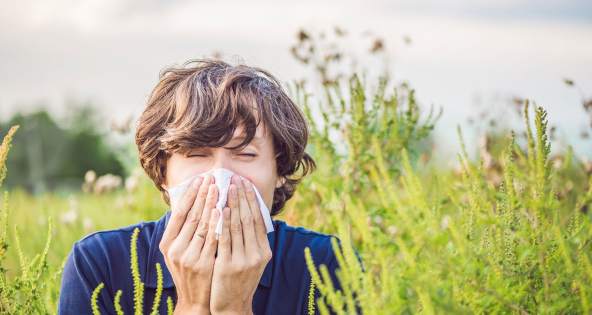 Allergic rhinitis - Allergies