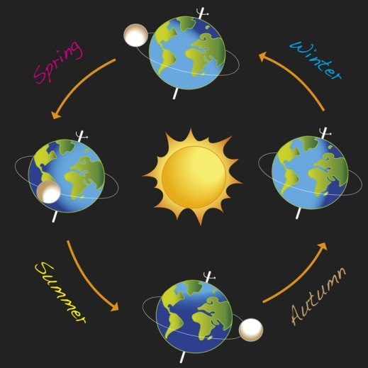 Illustration of Earth orbiting Sun to reflect the different seasons.