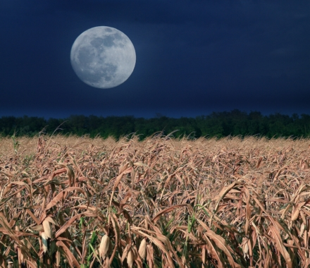 Here's Why September's Full Moon Isn't The Harvest Moon in 2020 featured image