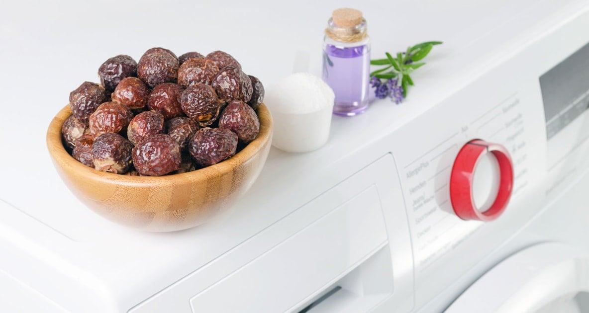 Western soapberry - Detergent
