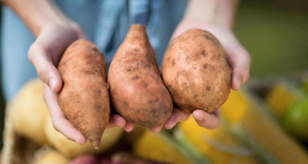Sweet potatoes held in hands.