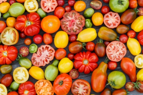 Hybrid vs. Heirloom: What's The Difference? Tomato FAQs
