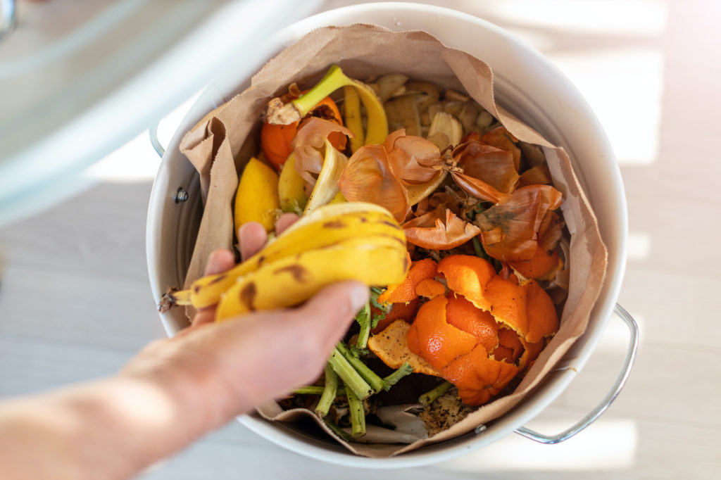 Compost collection bin filled with kitchen scraps.