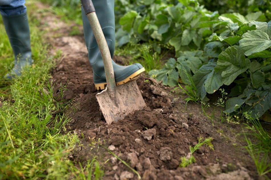 Agriculture - Farmer