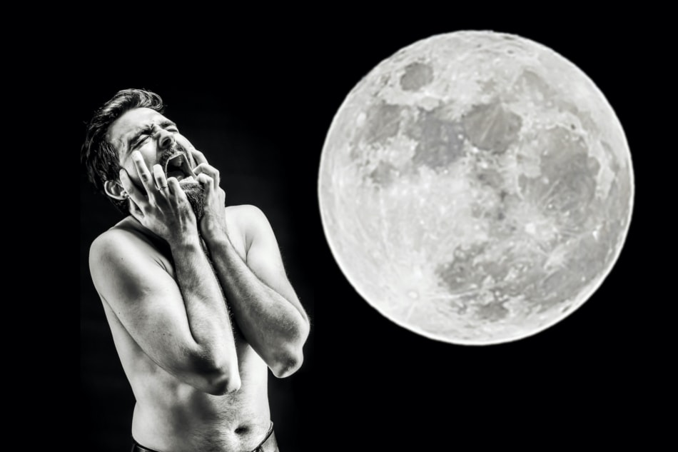 Moon - Werewolf