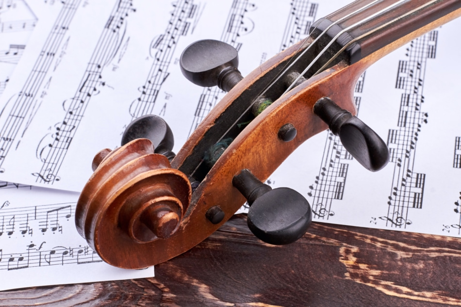 Violin - String Instrument