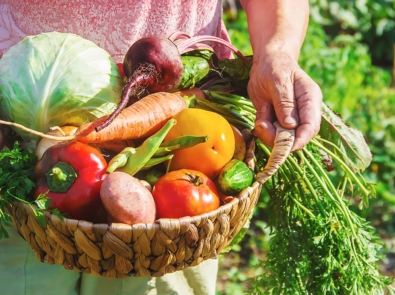 Know When To Harvest These 6 Vegetables featured image
