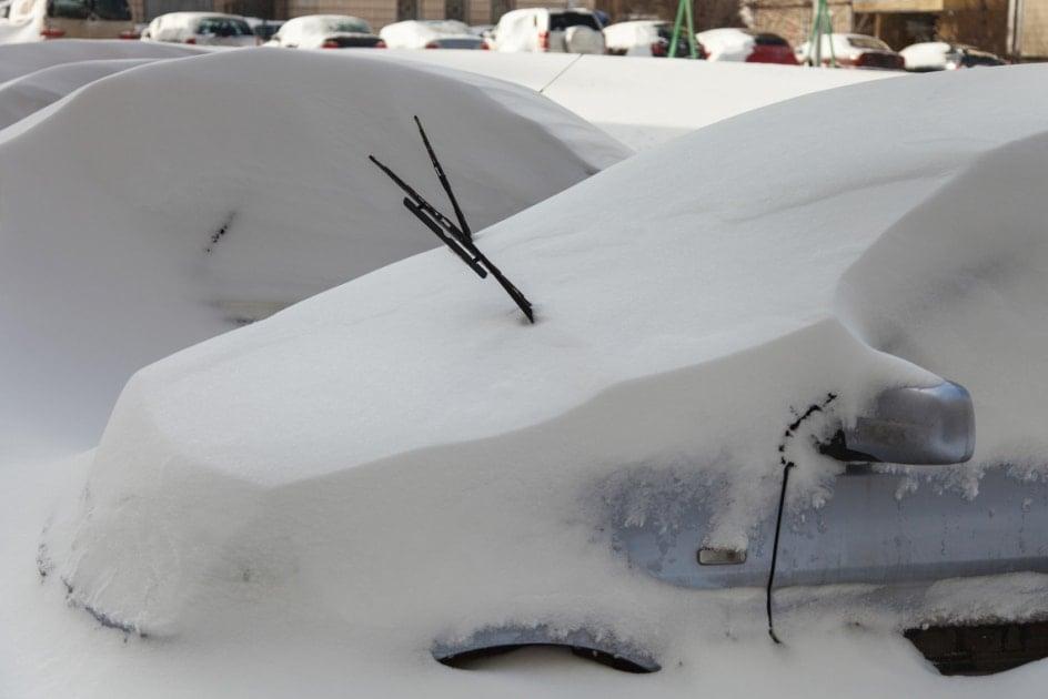 Snow - Blizzard