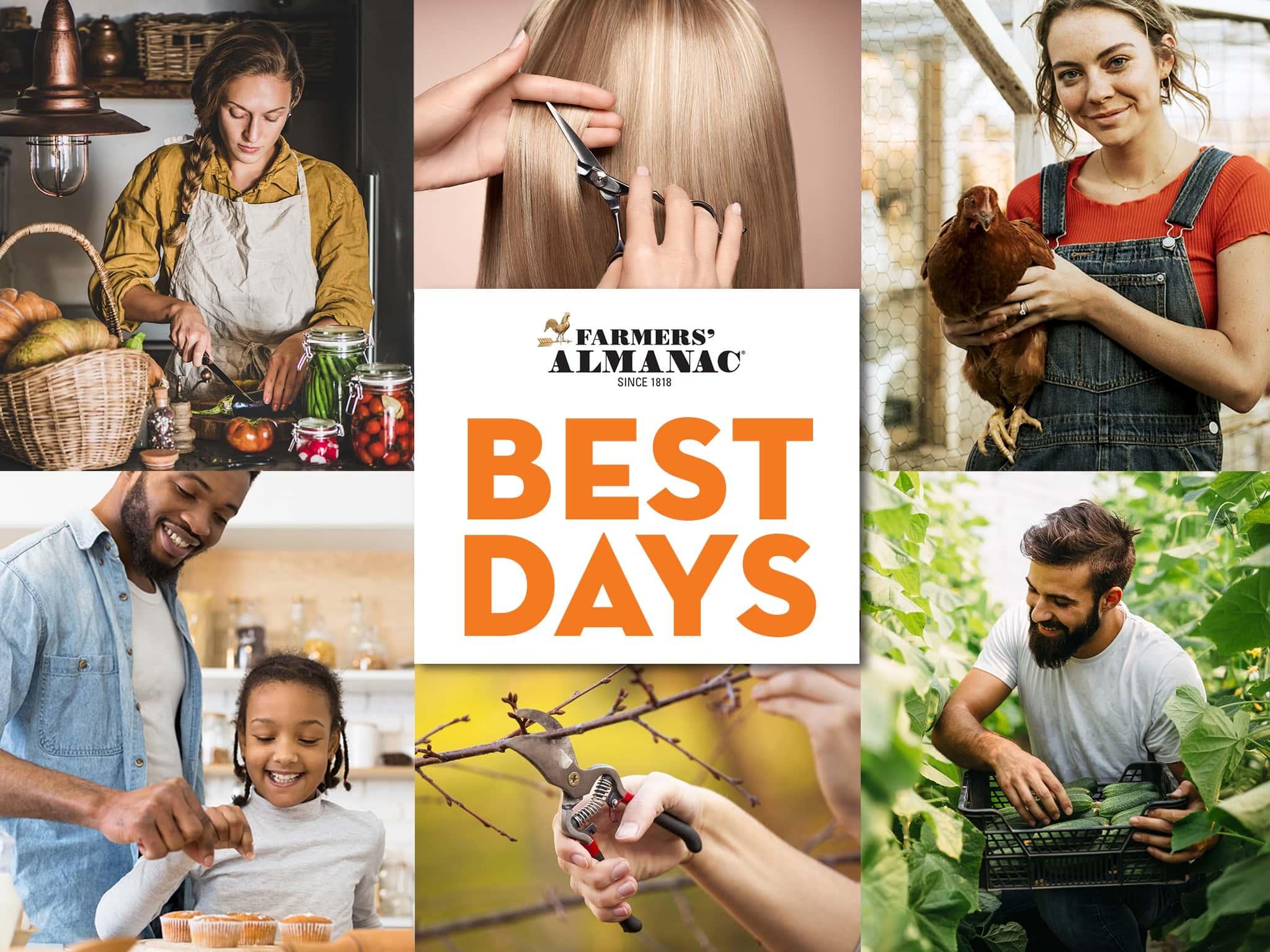 Best Days Calendar