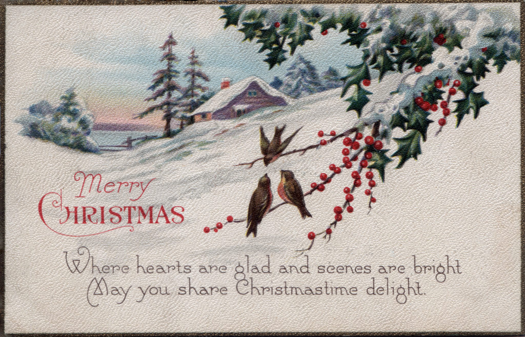 Vintage Postcard wishing a Merry Christmas showing winter scene, birds on bayberry branch cabin in snow