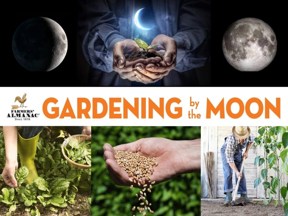 Garden By The Moon Header by Farmers' Almanac.