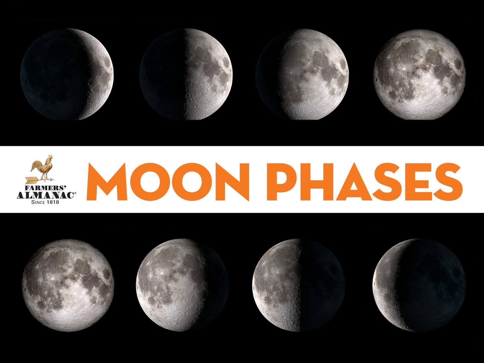 Moon Phase Header