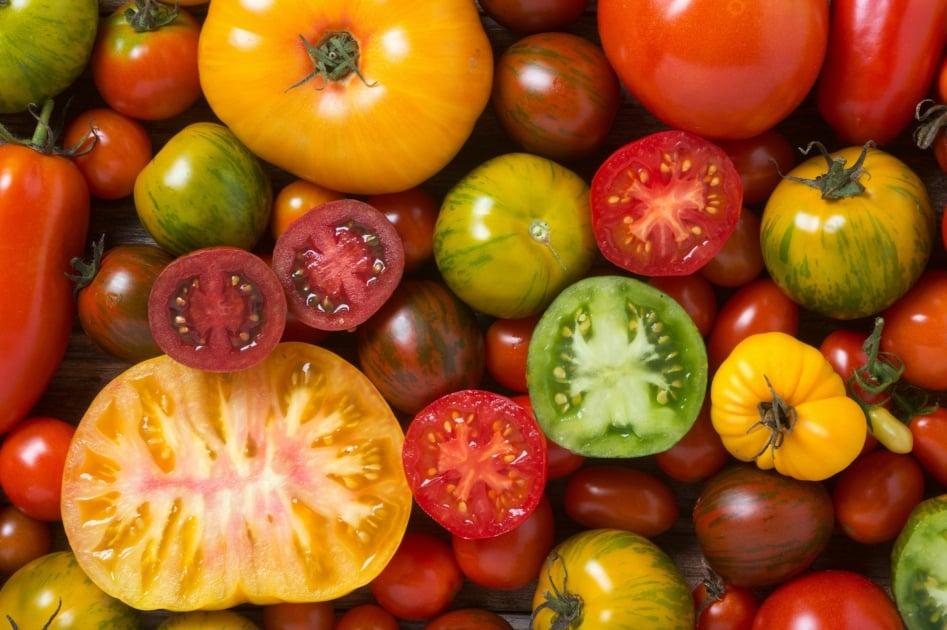 Heirloom Tomato - Italian tomato pie