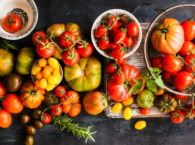 Tomato Varieties: Grow The Right Tomato For The Job! featured image