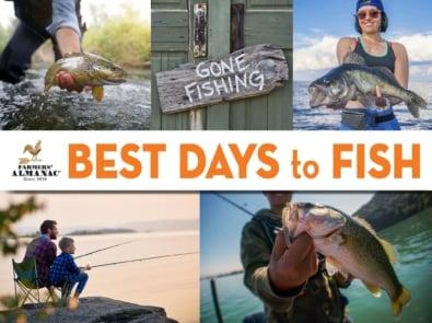 Fishing Calendar featured image