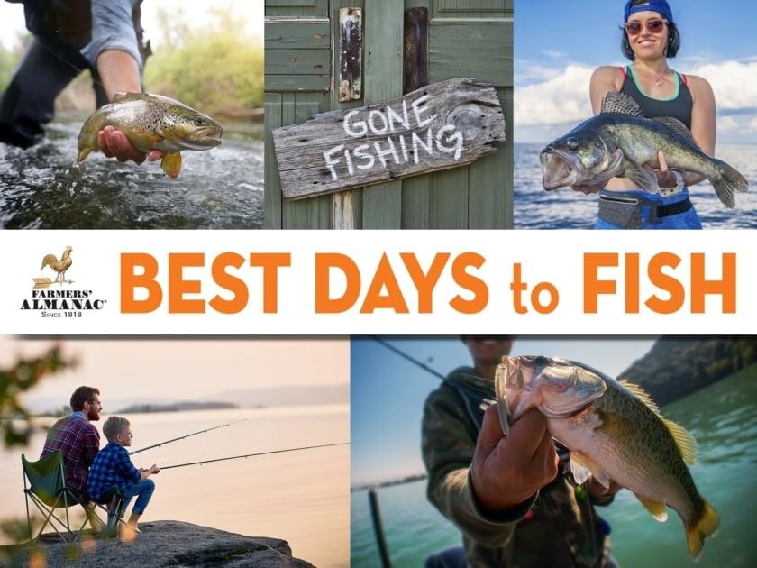 Bass fishing - Recreational fishing