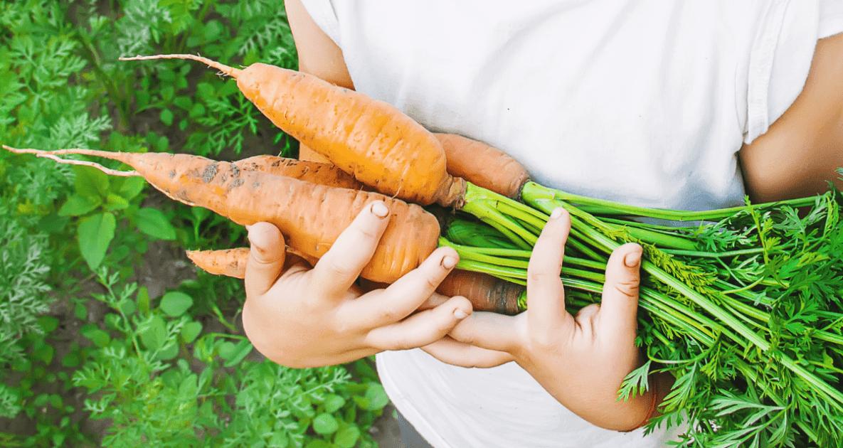 Local food - Farmers' Almanac