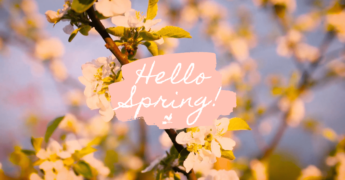 """A pink """"Hello Spring"""" sign in a tree sprouting flowers."""