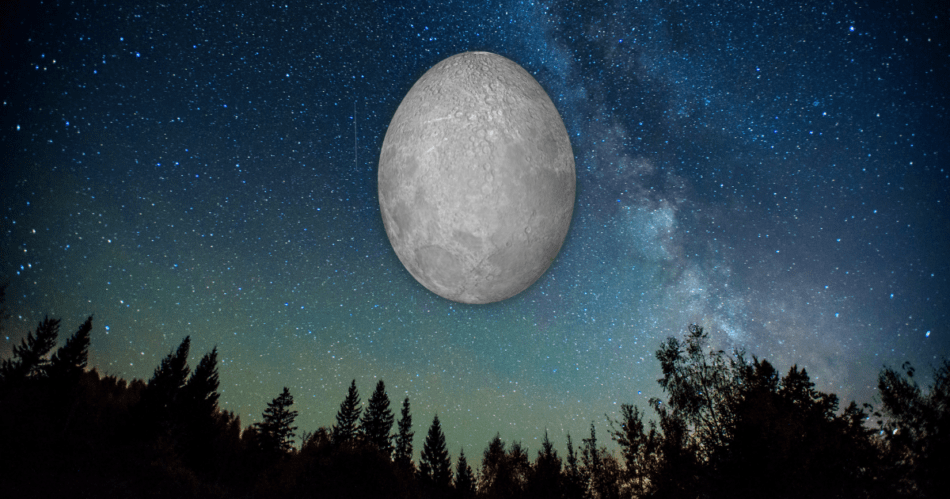 Egg shaped moon in the night sky.