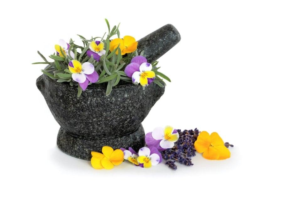 Pansies in mortar and pestle.
