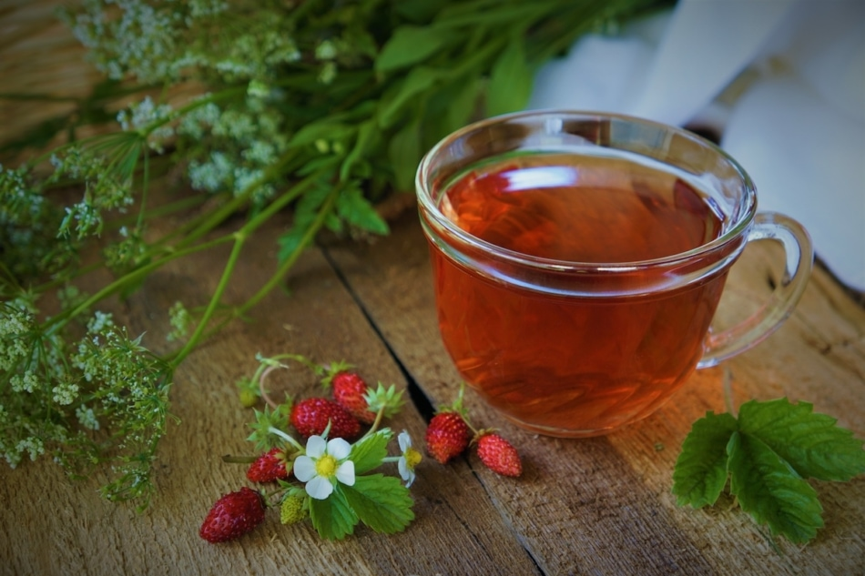 cup of wild strawberry top tea