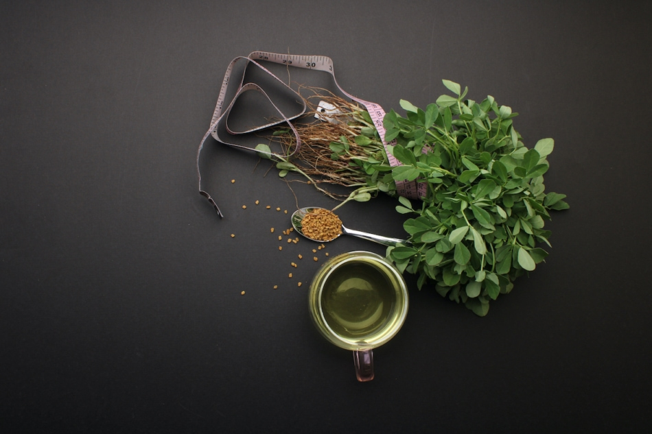 Fenugreek herb and seeds with tea
