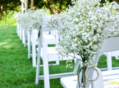 Baby's Breath: Tiny White Flowers That Steal The Show featured image
