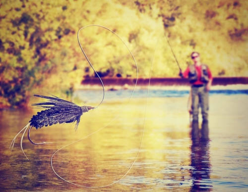 person fly fishing, close up of a fly