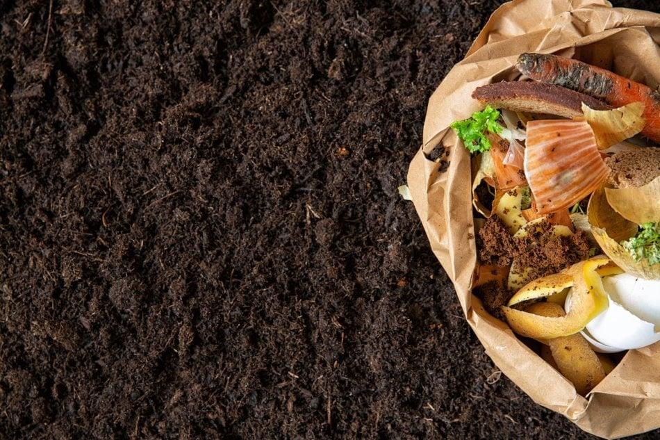 Dark rich compost next to kitchen scraps before decomposition.