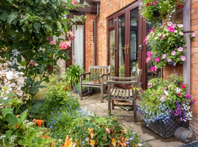 How To Keep Your Garden Thriving During a Heatwave featured image