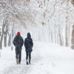 Couple walking during heavy snowstorm on the alley under the trees.