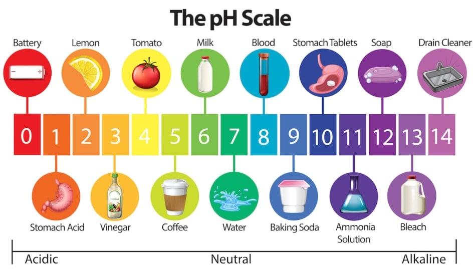 pH scale infographic.