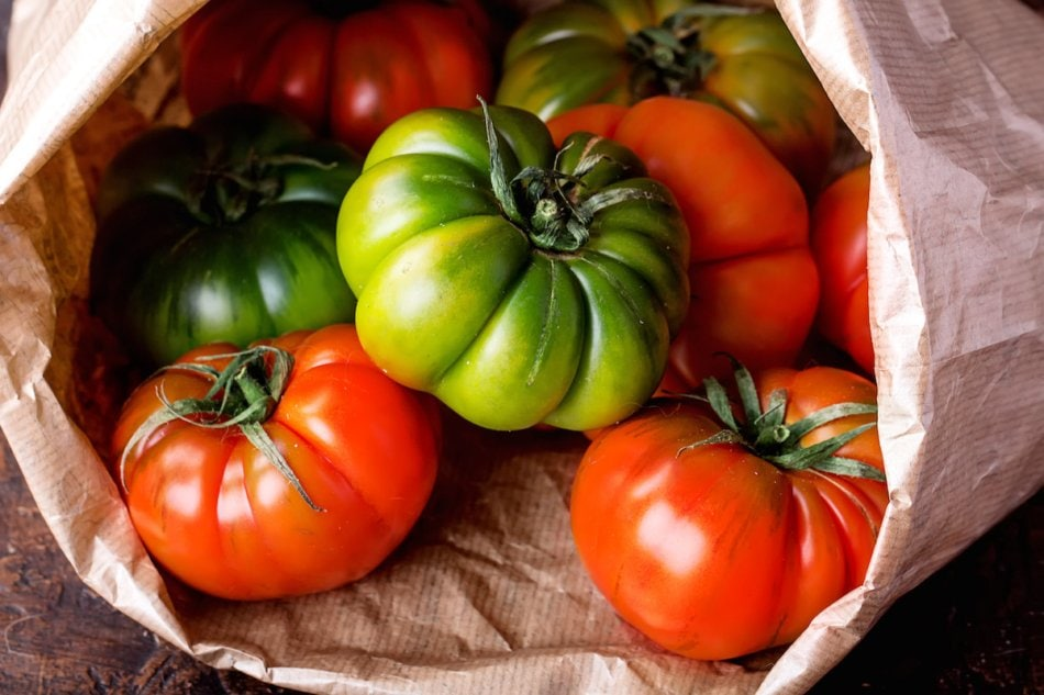 Selection of finest Italian organic tomatoes in the paper bag